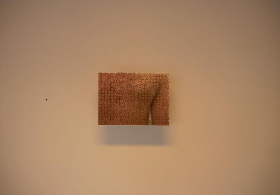 De chair et de pixels d'image Face